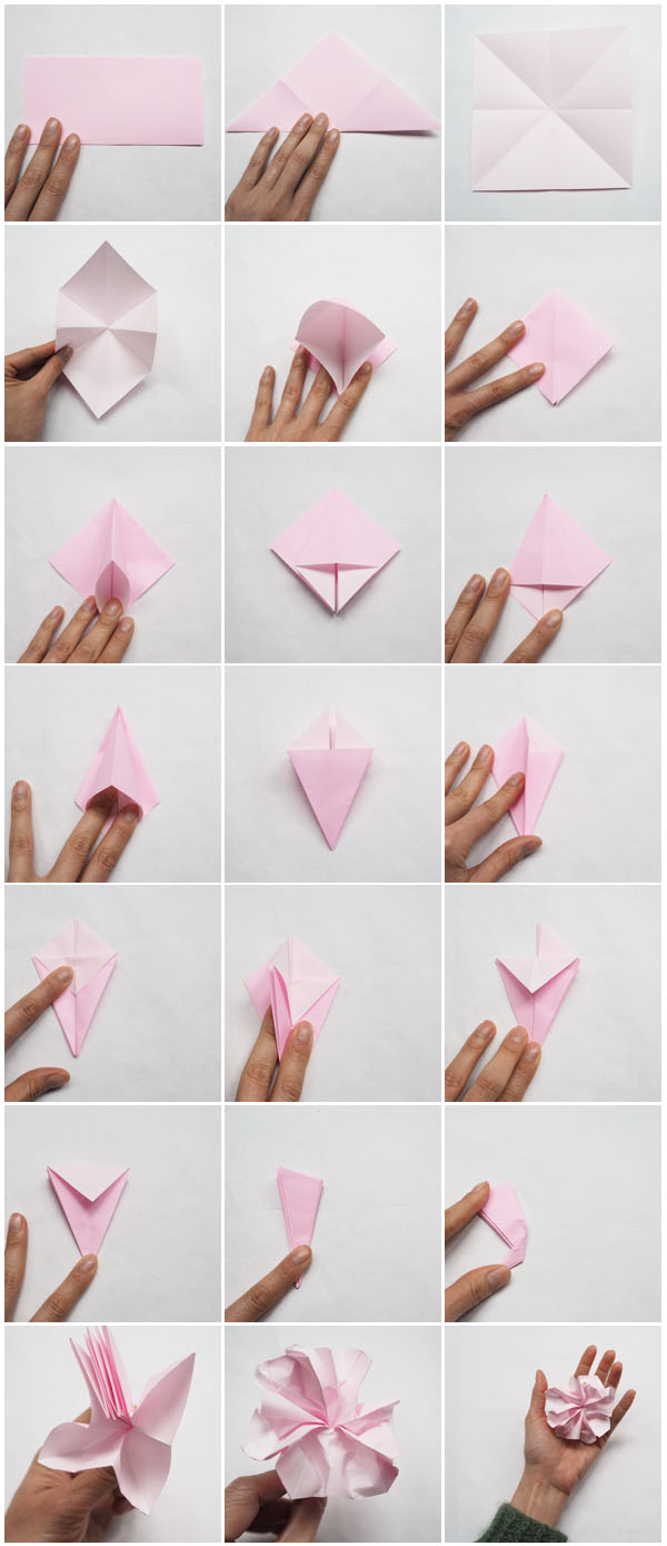 How to make tissue paper flowers step by step